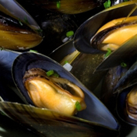 Mussels-Block-6.jpg