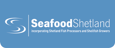 Seafood Suppliers – So Much to Sea